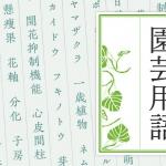 摘蕾、摘花、花殻摘み、花摘み
