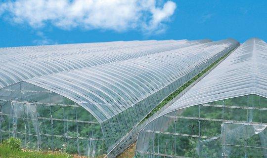 施設園芸農業