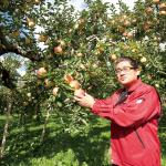 リンゴは味と中身で勝負!青森県弘前市・片山りんご株式会社