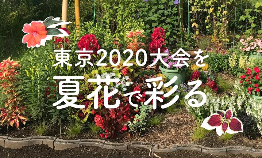 東京2020大会を夏花で彩る