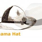 第75回 男性が帽子なしで外を歩けなかったころ~明治日本のパナマ帽子の話