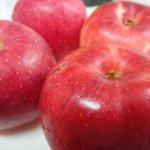 信州安曇野産『夏あかり』と貯蔵リンゴ『ふじ』を食べ比べてみた!