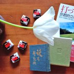 第114回  無理解・無関心という危機~京都府立植物園、栄光と受難の歴史